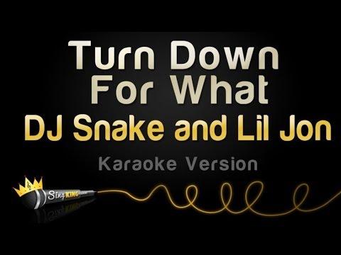 DJ Snake and Lil Jon - Turn Down For What (Karaoke Version)