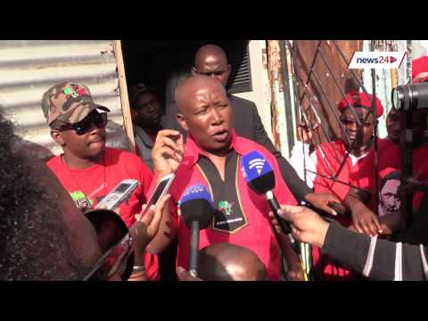 Pravin is not our favourite, but we're happy for stability - Malema