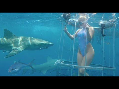 【閲覧注意】撮影中A.V女優さんがサメに襲われる…