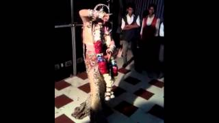 Dhool jagiro da..... #dance by bride on her marriage