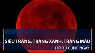 Siêu trăng, trăng xanh, trăng máu hội tụ cùng ngày | VTC1