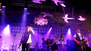 Watch Stars Soft Revolution video