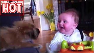 Video Funny Baby New P3 -  Video Hài Hước Trẻ Em Mới P3.mp4