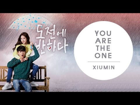 [THAISUB] You are the one - EXO Xiumin (Ost. Fall in Challenge)   kkaebsub
