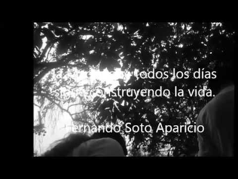 Fernando Soto Aparicio Mientras Llueve de Fernando Soto Aparicio