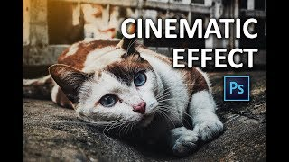 Photoshop Tutorial - How to Apply Cinematic Color Grading to your Photos FAST