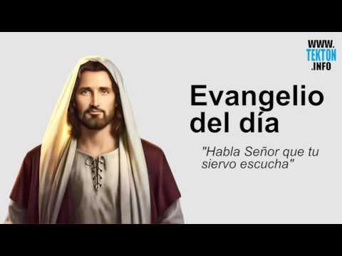 Evangelio Del Dia 10 De Julio De 2017 (Lunes 14º Tiempo Ordinario) Y Reflexión Papa Francisco