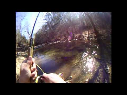 Fly Fishing in Virginia on Buffalo Creek