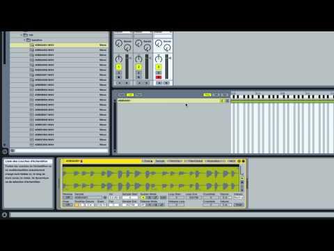 Ableton Live: Un sample une note