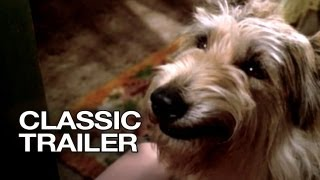 Because of Winn-Dixie (2005) - Official Trailer