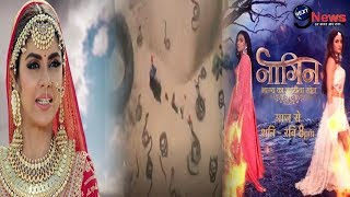 Naagin 4: 14th December 2019 || Colors TV Serial|| First Episode|| Full Story REVEALED