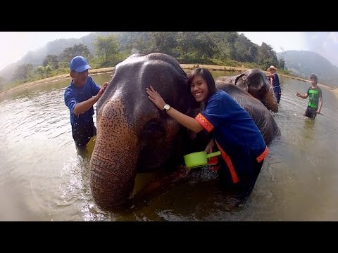 GoPro: Elephant Bath in Thailand