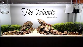 Download Aquascaping  THE ISLANDS 3Gp Mp4