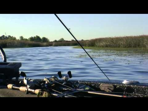 California Delta Bass Fishing Guide - Rus Snyders