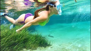 Girl swimming with BIG BASS in the Rainbow River