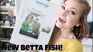 Top Fin Waterfall 5 Gallon Tank Unboxing/Setup! + My New Betta Fish | Alyssa Nicole |