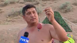 Отдых для настоящих мужчин. 1 день соревнований - ловля сазана и карпа TVK 24.06.15