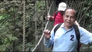 Sabah : Poring Canopy walkway