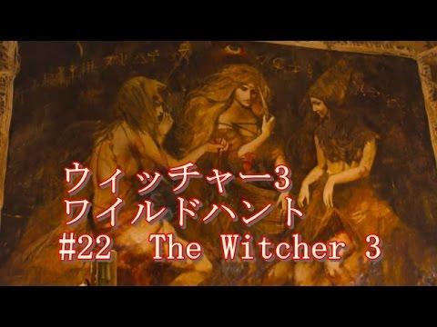 ウィッチャー3 ワイルドハントの画像 p1_21