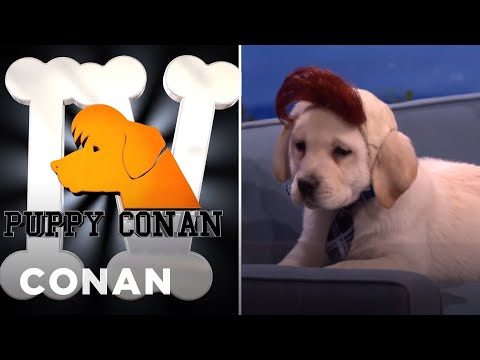Puppy CONAN IV Goes Off The Rails  - CONAN on TBS
