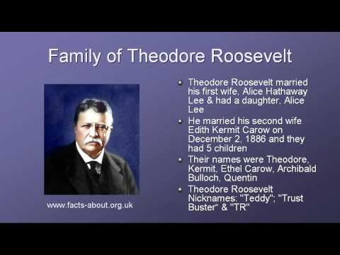 the long journey of theodore roosevelt to power in the united states