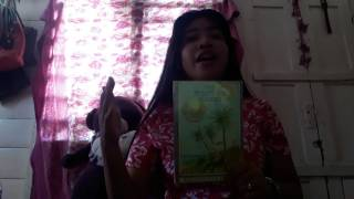 Book Review of THE TWENTY-ONE BALLOONS by Pearl S. Libodlibod