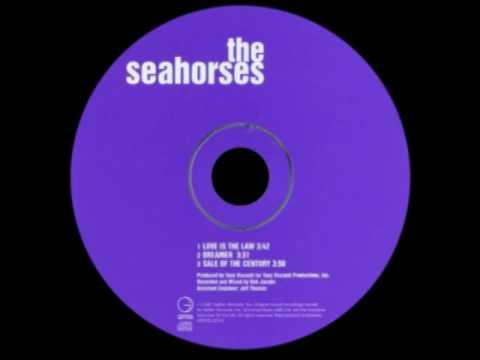 Seahorses - Dreamer