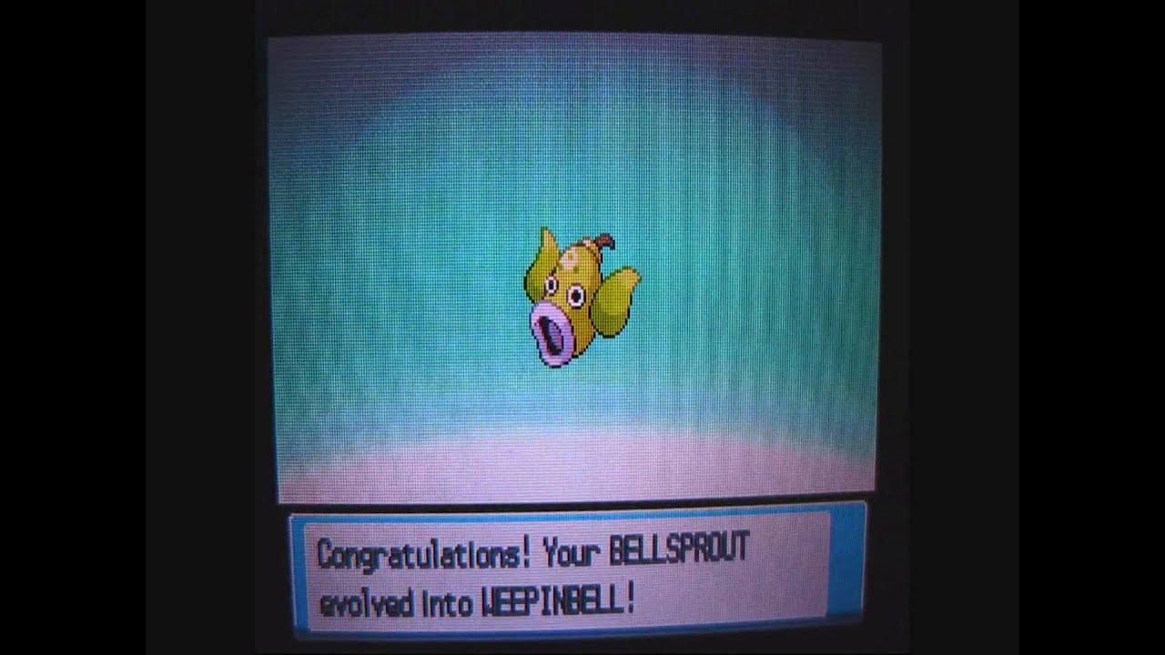 Pokemon Bellsprout Evolves Shiny Bellsprout Evolves on