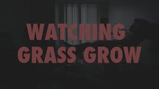 Watching Grass Grow