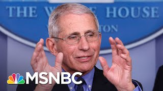 Dr. Fauci Explains The Timeline And Risks Of Creating A COVID-19 Vaccine | MSNBC
