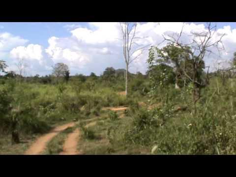 Safari en Jeep por el Hurulu Eco Park (Sri Lanka)