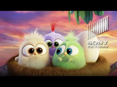 THE ANGRY BIRDS MOVIE - Hatchlings Mother's Day Greeting (HD)