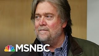 The Cult Of Personality Of Steve Bannon   Morning Joe   MSNBC