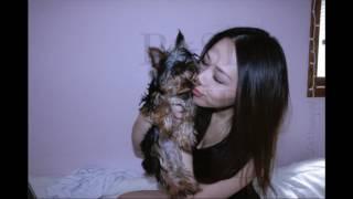 Michelle Vang | Vim Kuv Los Qeeb by Yaka Cover