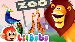 I Spy With My Little Eye Song - ZOO Animals | Little BoBo Nursery Rhymes - FlickBox Kids