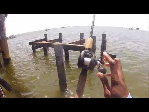 Catching redfish and sheephead in Delacroix