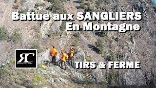 PETARADE & FERME! chasse aux sangliers en battue dans les Pyrénées, Browning Maral