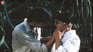The Head of the Population Committee | Best Vietnam Movies You Must Watch | Vsense