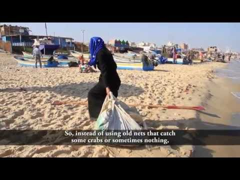 Strengthening Community Resilience In Gaza Strip