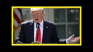 Latest News 365 - Undisciplined trump will break his own tax reform pitch