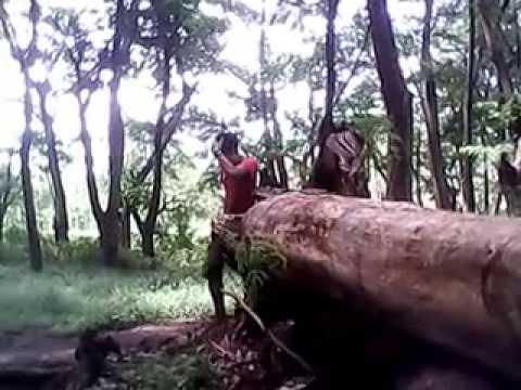 intip wanita mandi di hutan