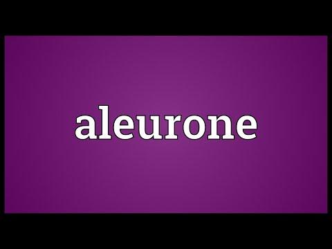 Header of aleurone