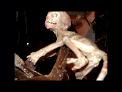 UFO Sightings Cryptoid Alien Species Found In Mexico? Jaime Maussan Exclusive Interview 2013