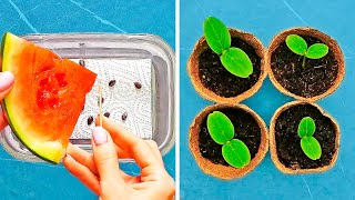 23 WAYS TO GROW YOUR OWN SEEDS