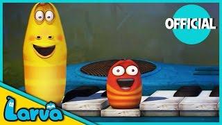 LARVA - Funny Animation | THE LARVA'S CONCERT | Cartoons For Children | LARVA Official