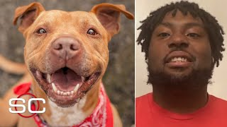 Super Bowl champion Derrick Nnadi paid the adoption fees for over 100 shelter dogs | SportsCenter