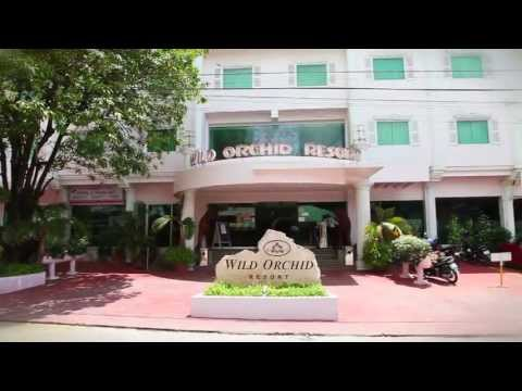 Wild Orchid – Angeles City