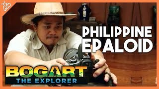 Bogart the Explorer - The Philippine Epaloid