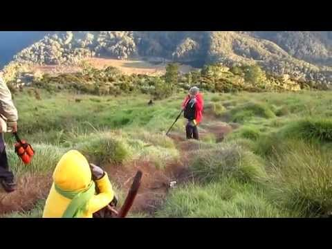 Mt. Apo Rainforest Adventure