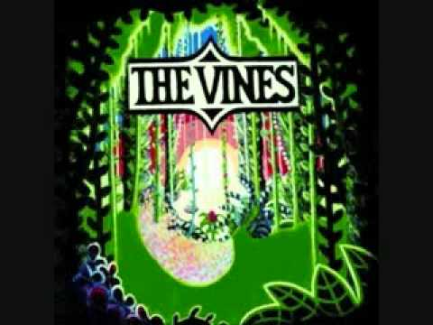Vines - Autumn Shade